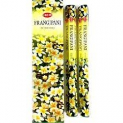 Hem Frangipani, tall stick - Click for more info