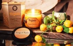 Organic Goodness Soy Candles (4ocno - Narangi Orange)